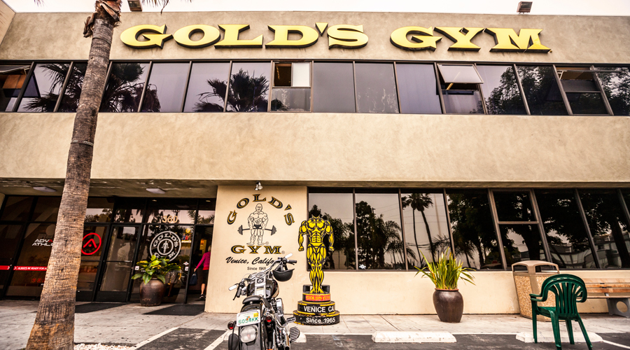 golds gym 16+ active gold's gym coupons, promo codes & deals for oct 2018 most popular: join for $1 plus 6 months for $7 total.