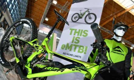 German E-Bike Producers Forecast Rebound