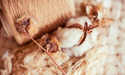 Can Cotton Compete?