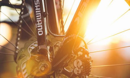 Shimano's Profits Slump In Nine Months
