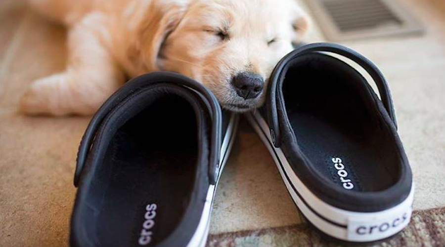 Crocs Improves Bottom Line, But Sales Woes Continue