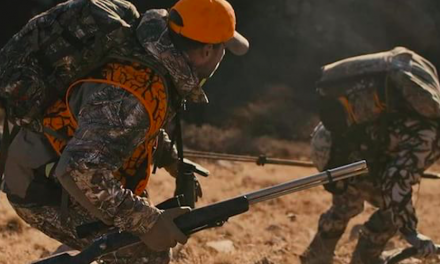 Remington Outdoor Q3 Boosted By MSR Strength