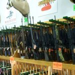 Can Sportsman's Warehouse Sustain Firearms Growth?