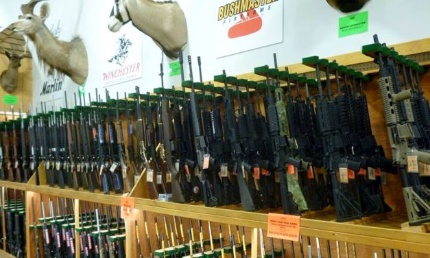 Firearms Sales Help Sportsman's Warehouse Gain Share In Q2