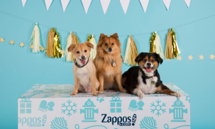 Zappos To Support Pet Adoptions Over The Holiday