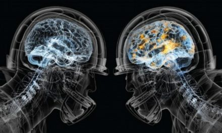 Clockwork Technology Enters Sports Helmet Game