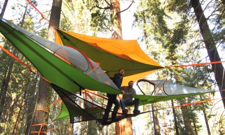 Innovators Of The Year — Tentsile, Tepui Tent & Yakima
