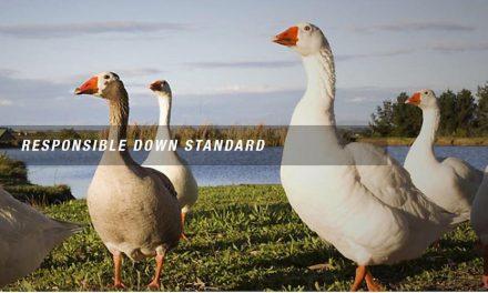Textile Exchange, NSF International To Create One Global Down Standard