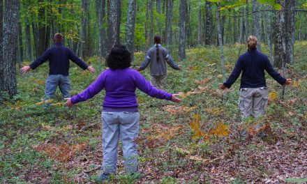 Forest Bathing Offers Rejuvenation, But Will It Catch On?