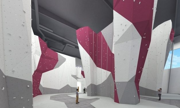 REI And Momentum Tie The Knot