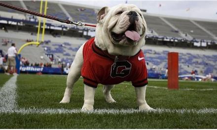 Bulldog Sporting Goods To Close