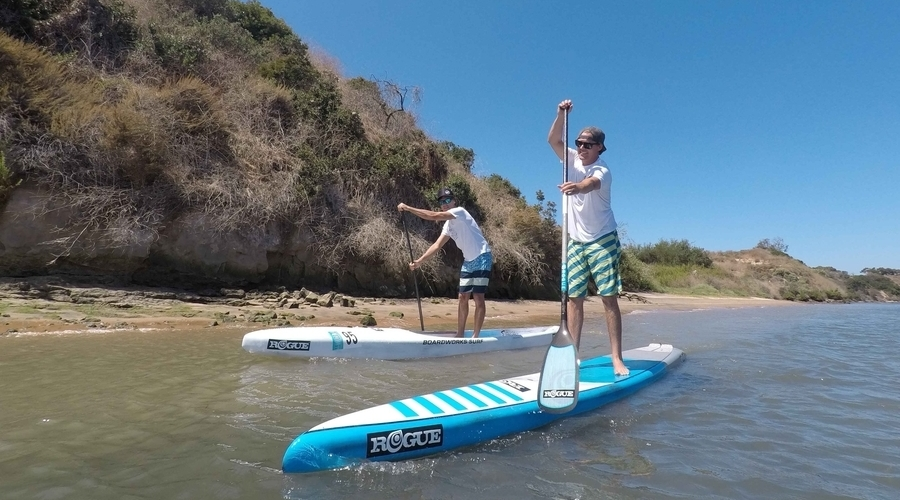 Boardworks Acquires License Agreement To Rogue SUP And Surf