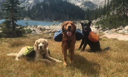 Ruffwear Contributes $50,000 To The Conservation Alliance
