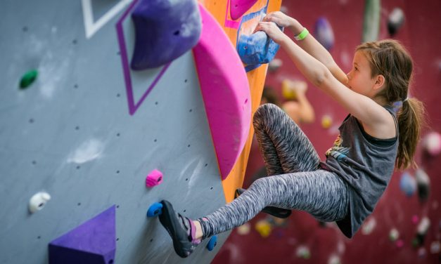Kid Climbers On The Rise