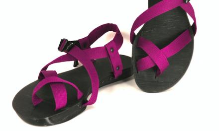 OESH Shoes AwardedPhase II Grant