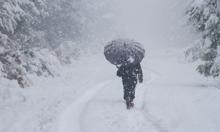 NOAA Winter Forecast: Cooler, Wetter North And Warmer, Drier South