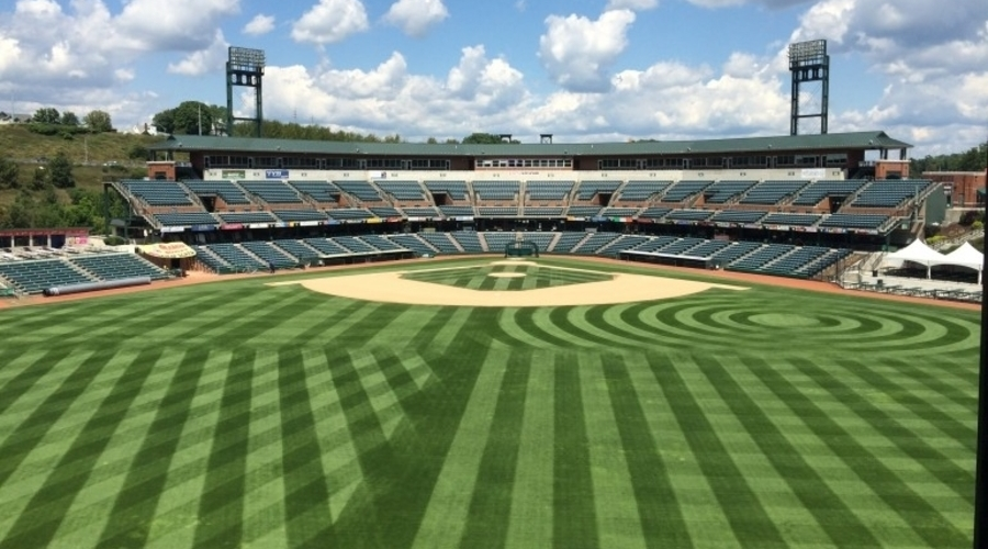 The Art Of The Turf Manager