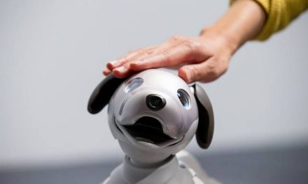 Man's Best Friend: Aibo The 'Robo' Dog