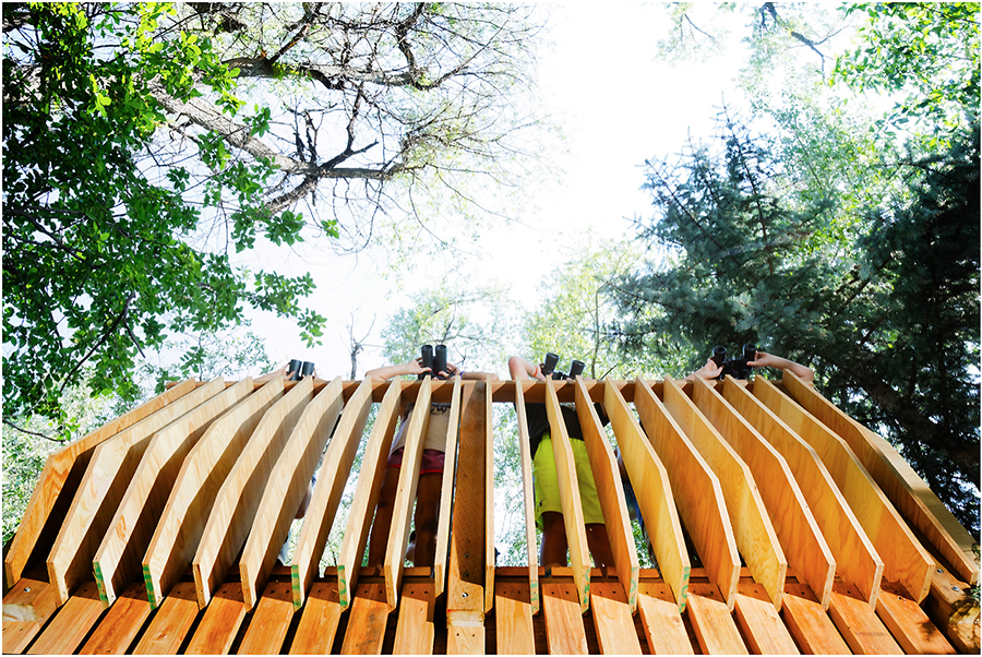 Environmental Stewardship … One Tree House At A Time