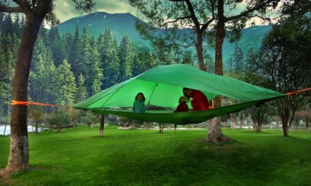 Tentsile Looks To Progression Brands To Leverage Experience And Resources To Fuel Growth