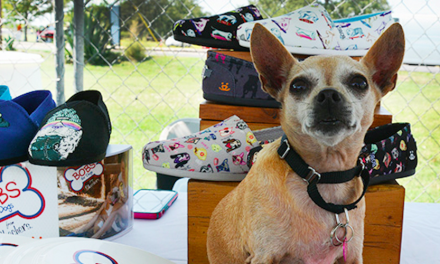 Skechers' Bobs For Dogs Campaign Helps 583,000+ Animals