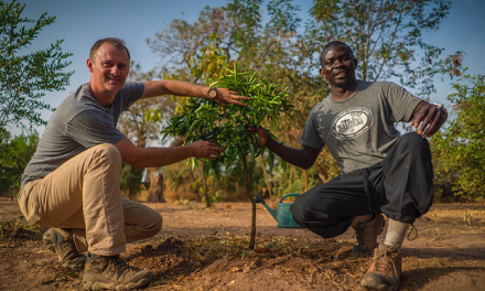 Oboz Plants Two Millionth Tree