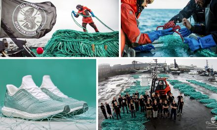 Designing Out Waste … The Movement That May Just Save Our Oceans From Plastic Pollution