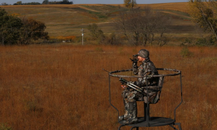 GSM Outdoors Acquires Mainstream Holdings
