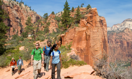 REI To Donate to Help Restore Parks Amid Shutdown