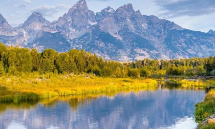 Industry Reaction To President's Signing Of Public Lands Bill
