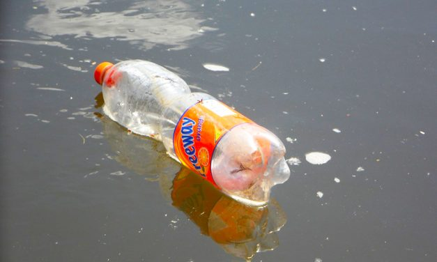 It's Time To Implement Real Solutions To Plastic Pollution