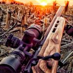 Vista Outdoor Announces Sale Of Savage Arms