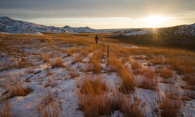 New Study Reveals 6.35 Million Acres of Western State Lands Are Landlocked