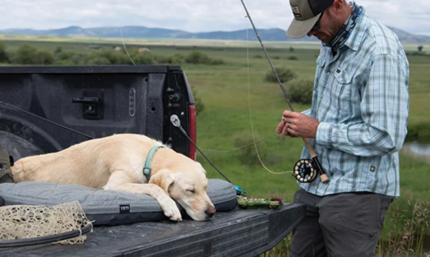 Strong Q2 Again Proves Yeti Much More Than Expensive Coolers
