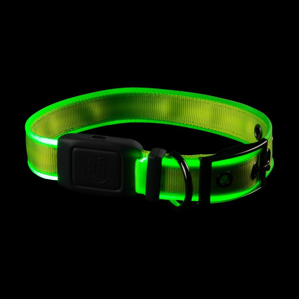 NiteDog Recharge. LED Dog Collar