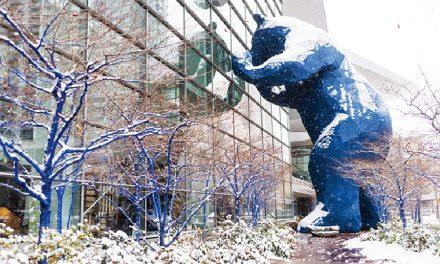 2020 Outdoor + Snow Show Recap