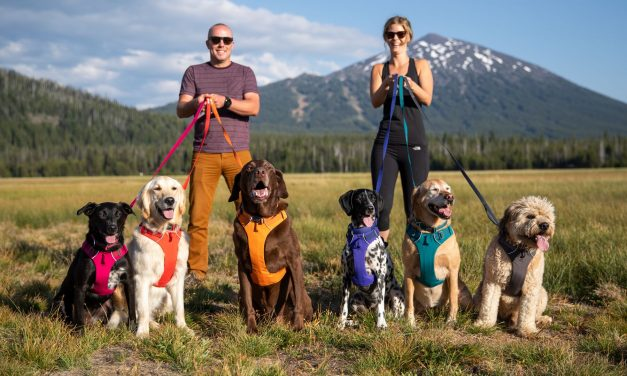 Ruffwear Introduces New Spring 2020 Product Line