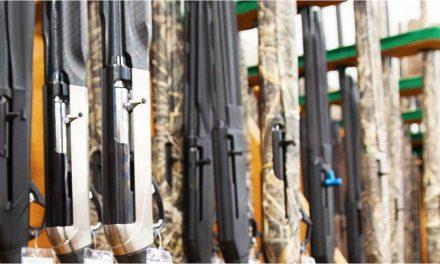Acquisitions, Firearms, E-Commerce Fuel Sportsman's Warehouse In Q4