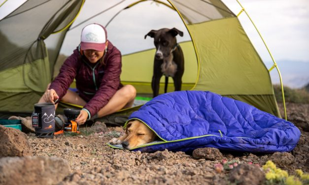 Ruffwear Summer 2020 Product Line Now Available