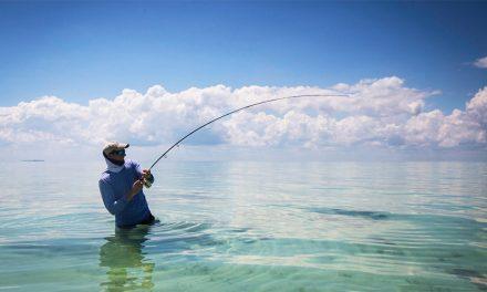 NOAA Fisheries Study Reveals $10.5 Billion Impact From Marine Recreational Fishing Trips