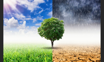 OIA Commends House Climate Crisis Action Plan