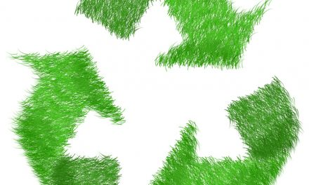 Report: COVID-19 Has Not Reduced Consumers' Demand For Sustainable Solutions