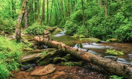 Congress Passes The Great American Outdoors Act
