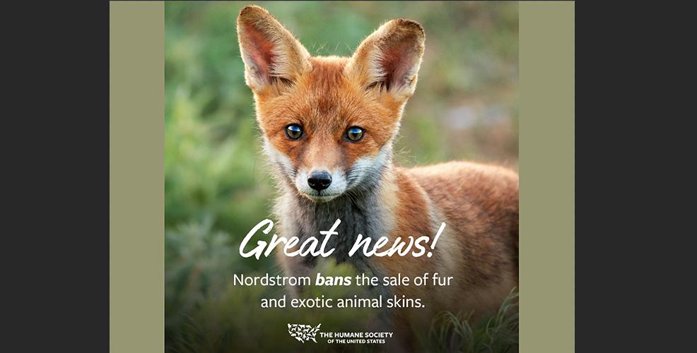 Nordstrom To Ban Fur, Exotic Skins