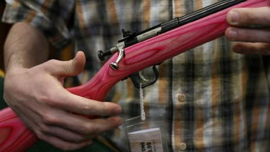 Sportsman's Warehouse Blowout Q2 Boosted By Firearms Surge
