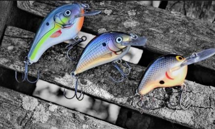 Northland Fishing Tackle And Bagley Bait Company Expand Rep Group Territory