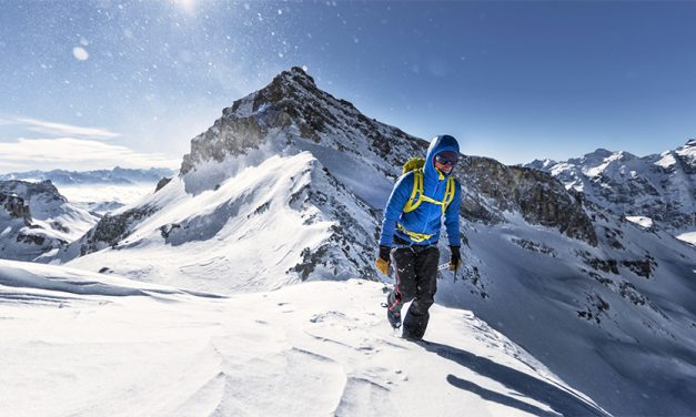 Backcountry Sales On Uphill Trend