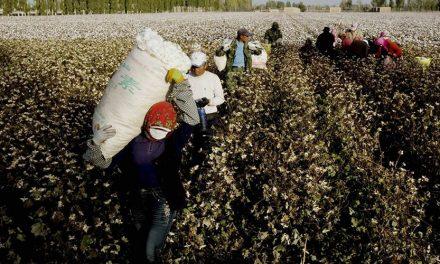 Nike Lobbying Against Xinjiang Forced Labor Bill