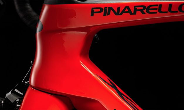 Pinarello Announces Key Management Hires