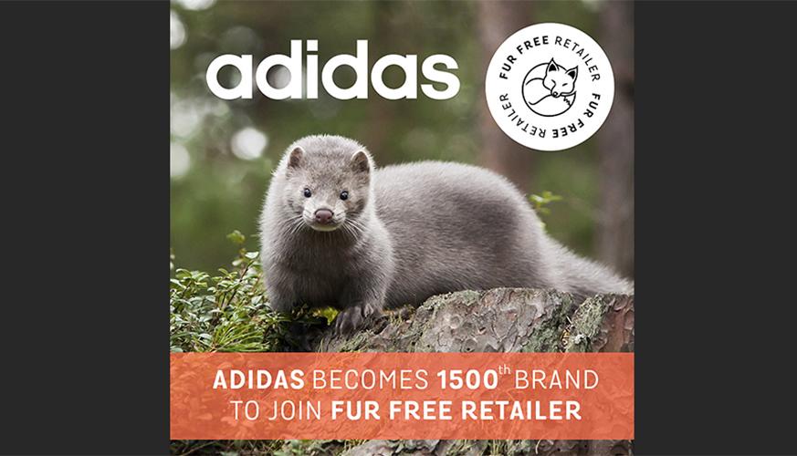 Adidas Bans Fur, Joins Fur Free Retailer Program